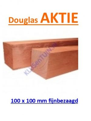 Paal Douglas 100 x 100 mm fijnbezaagd blank -0